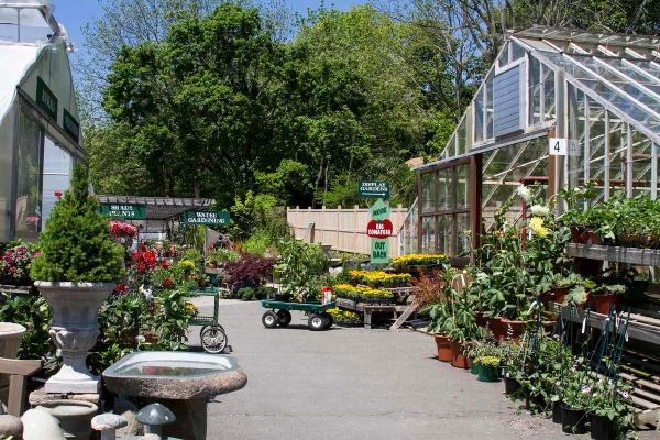 Garden Supply Information Online Tips