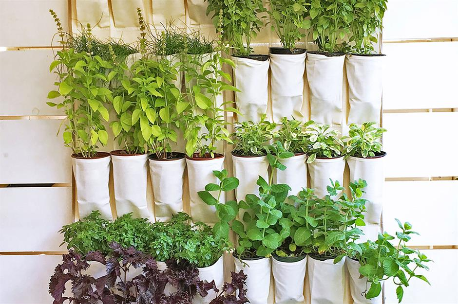 5 Space-Savvy, Easy And Efficient Urban Gardening Ideas